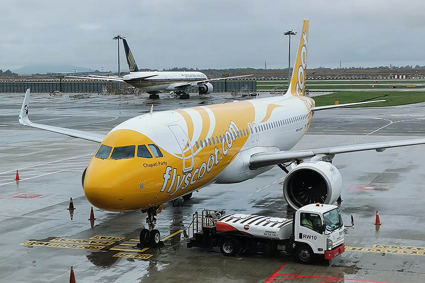 Scoot plane at airport.
